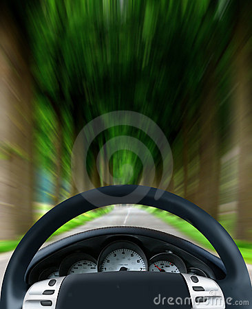 Steering wheel on forest highway