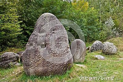 Steine, die wachsen