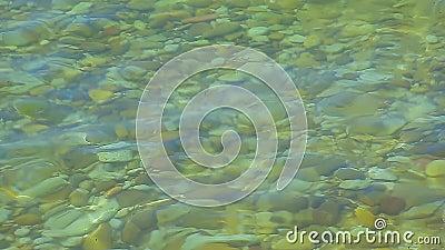 Steine unter Wasser stock video footage