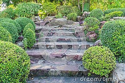 steintreppe im garten stockfoto bild 54361302. Black Bedroom Furniture Sets. Home Design Ideas