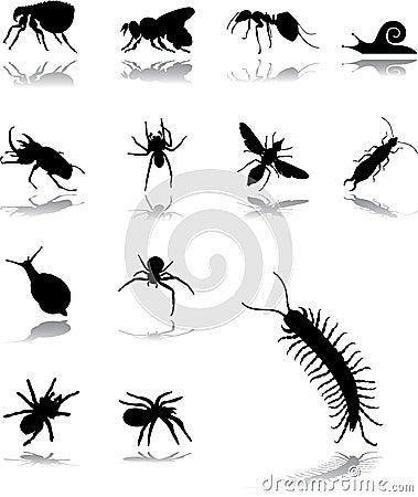 Stellen Sie Ikonen - 102 ein. Insekte