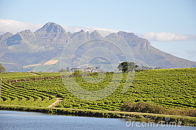 Stellenbosch and lake south africa