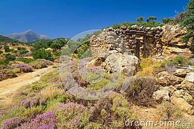 Stenigt landskap av Crete