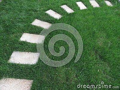 Stenväg i trädgården