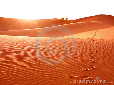 Step in desert sand