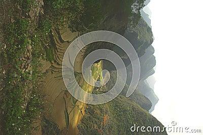 Step fields in karst area