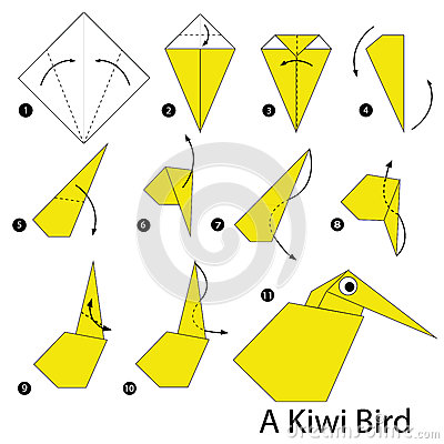 Step by step instructions how to make origami A Kiwi Bird. Vector Illustration