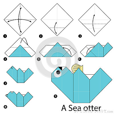 Step By Instructions How To Make Origami A Sea Otter Stock Vector Image 68770556