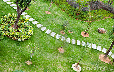 Stepping stones through a  tranquil garden