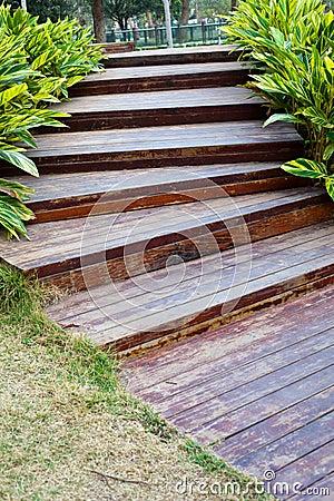 Steps in garden