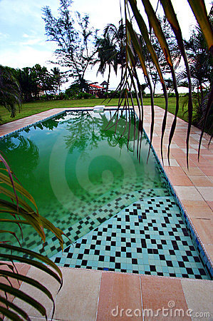 Steps into green swimming pool