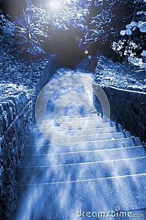 Steps haze