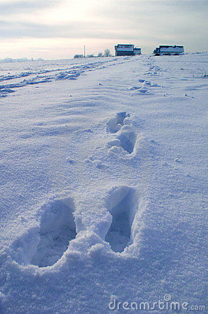 Free Steps In Snow Royalty Free Stock Photography - 2827427