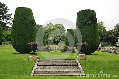 Steps in landscaped garden