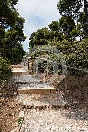Steps in Park