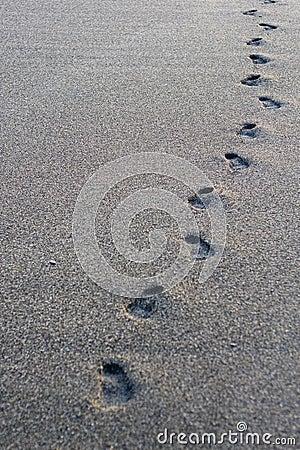 Steps track