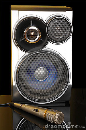 Stereo with speakers and microphone