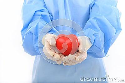 Sterile doctor holding heart