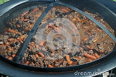Stew or goulash
