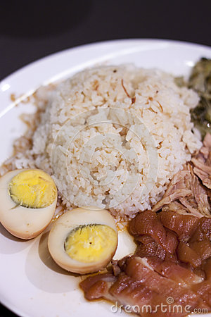 Stewed Pork on with Rice