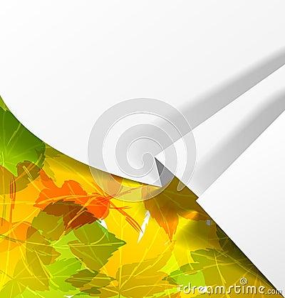 Sticker realistic shadow autumn nature orange post