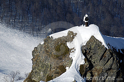 Stile libero di Backcountry in Krasn