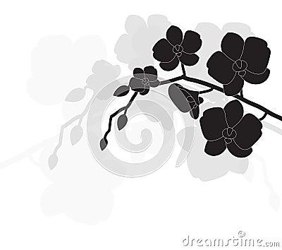 stilisiert schwarze orchidee lizenzfreies stockbild bild 26490236. Black Bedroom Furniture Sets. Home Design Ideas