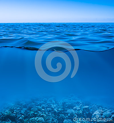 Free Still Calm Sea Underwater Stock Photography - 28887682
