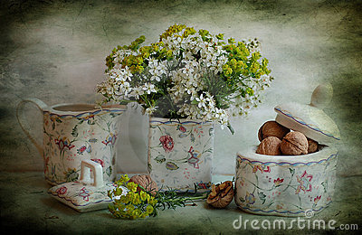 Still life with a bird cherry tree and nuts
