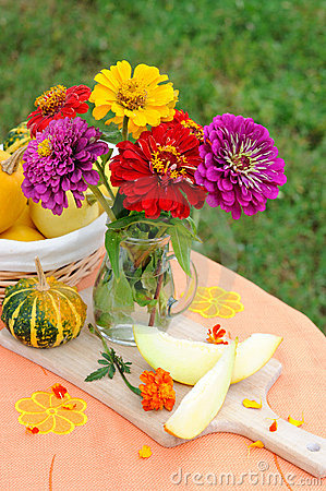 Still life with a bouquet of zinnia flowers