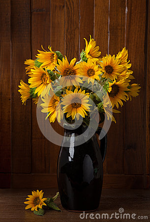 Bunch of Beautiful Sunflowers