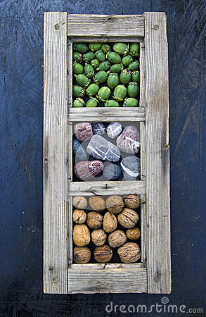 Free Still Life Composition On Black Background In Windows Frame Stock Photography - 64925272