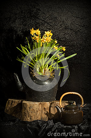 Still life with daffodils and teapot