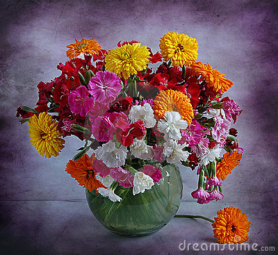 Still life with garden carnations and calendula