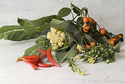 Still life with peppers and wild rose