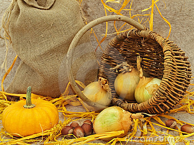 Still life with pumpkin, basket, onion and nuts