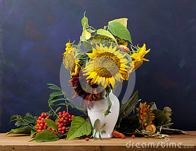 Still Life with Sunflower