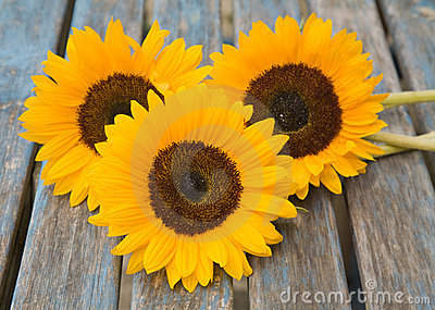 Still life with sunflowers set outside