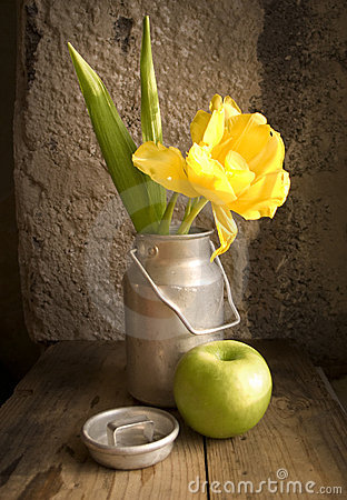Free Still Life - Tulip And Apple Stock Photography - 3534942