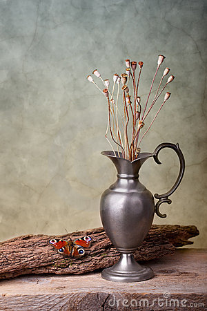Free Still Life With Butterfly Royalty Free Stock Photography - 19543917