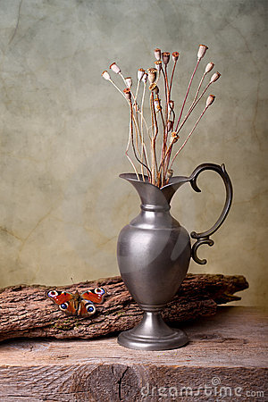 Free Still Life With Butterfly Royalty Free Stock Image - 19543926