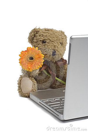 Free Still-life With Cuddle-bear Stock Photos - 1013313