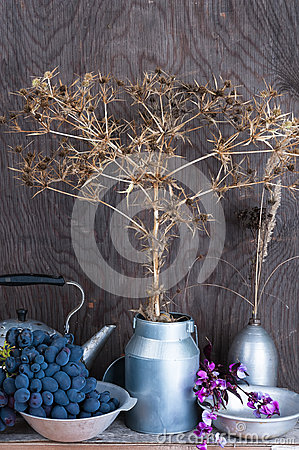 Free Still Life With Dry Prairie Prickly Flowers And Grapes Royalty Free Stock Images - 33531409
