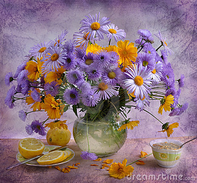 Free Still Life With Lilac Camomiles Royalty Free Stock Photography - 15467857