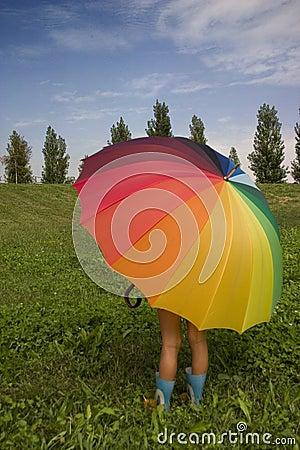 Free Still Summer Royalty Free Stock Photo - 1278185