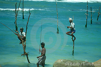 Stilt Fishermen Editorial Photography