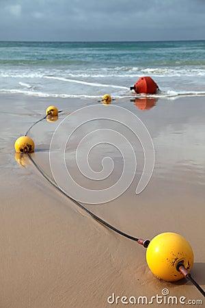Stinger jellyfish protection net
