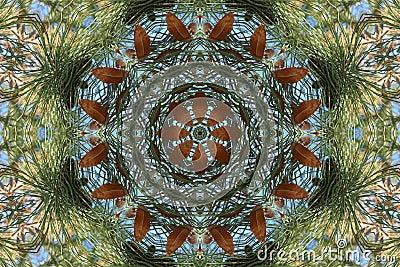 Stock image of Autumn Kaleidoscope