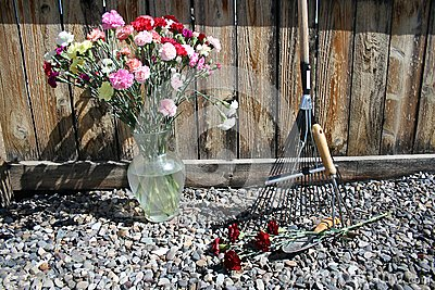 Stock image of Garden Tools with carnations