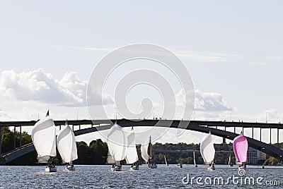 Stockholm sailboat regatta